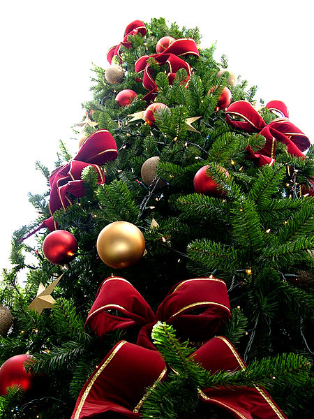 450px-Christmas_tree_sxc_hu