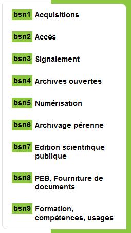 segments BSN