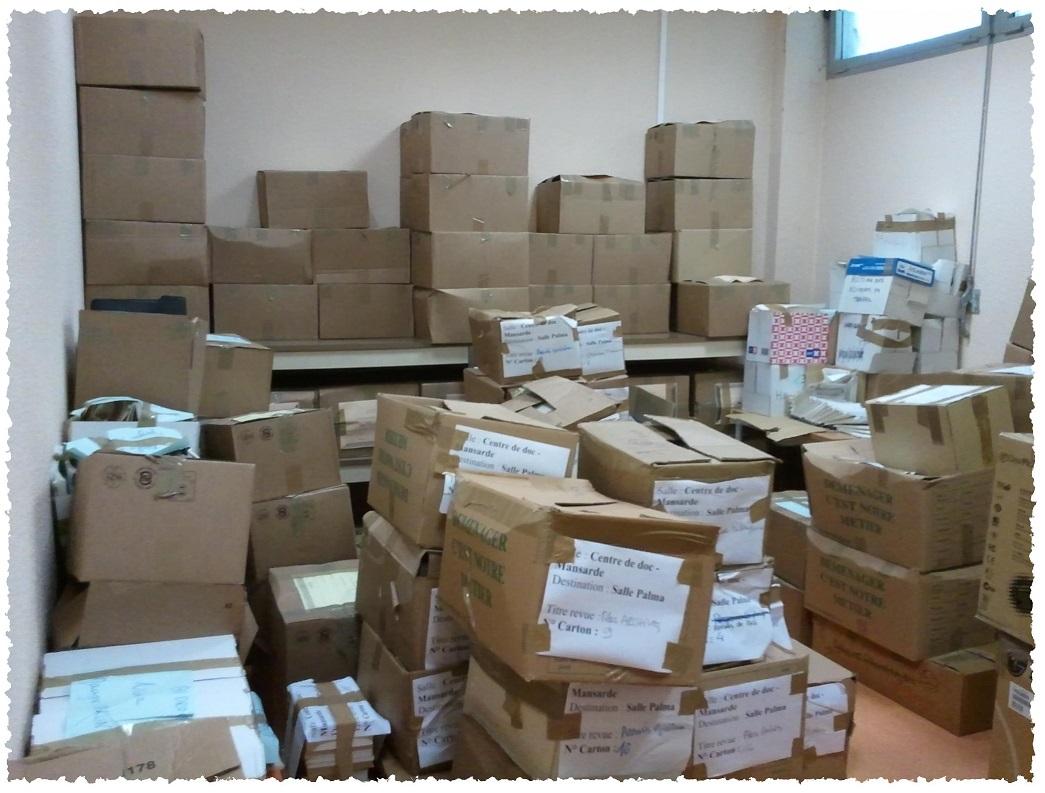 La Bibliothèque Maryse Carlin, stockée temporairement en carton, est aujourd'hui totalement accessible en rayon